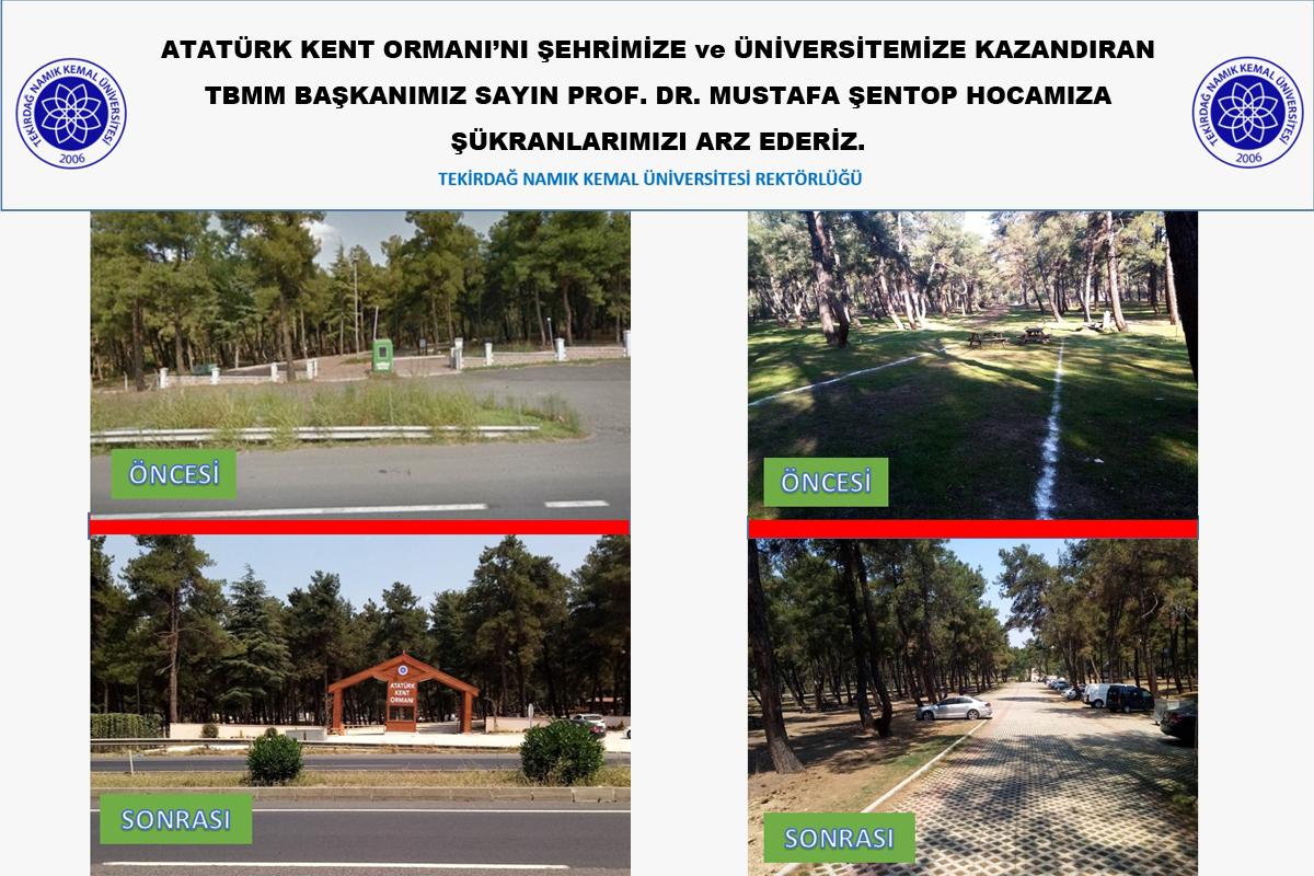 Namık Kemal Üniversitesi1